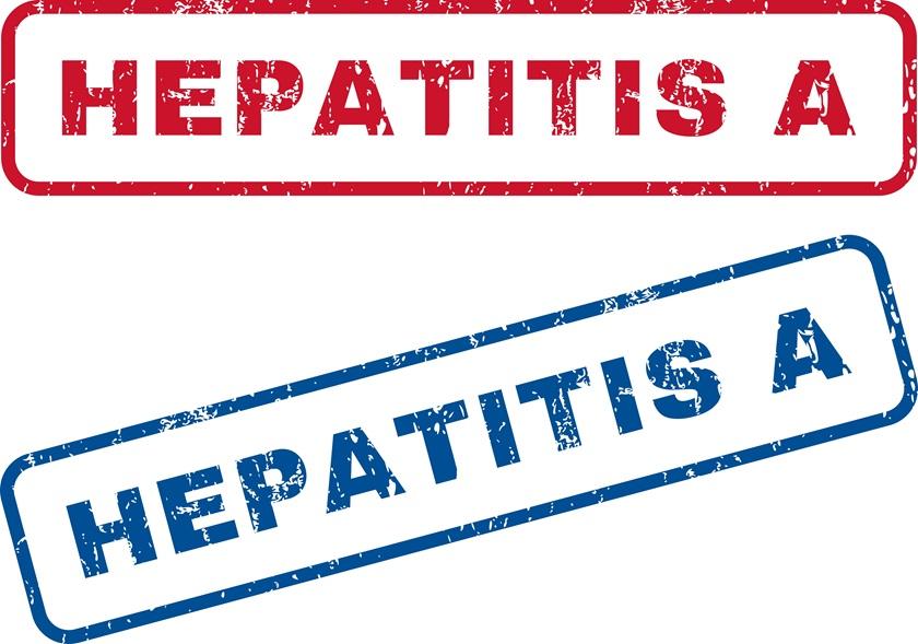 Hepatitis 02