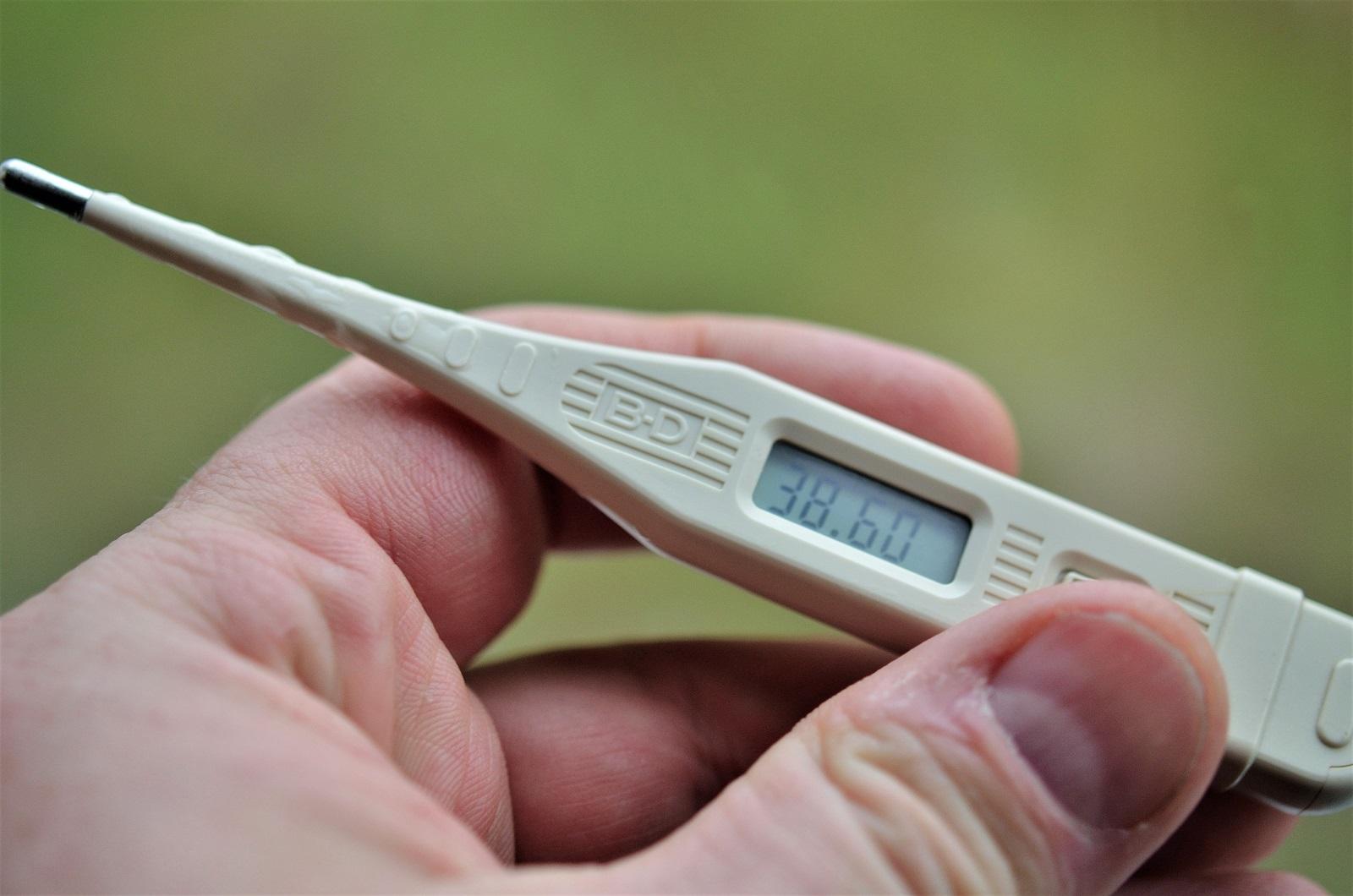 Billede af termometer der viser feber