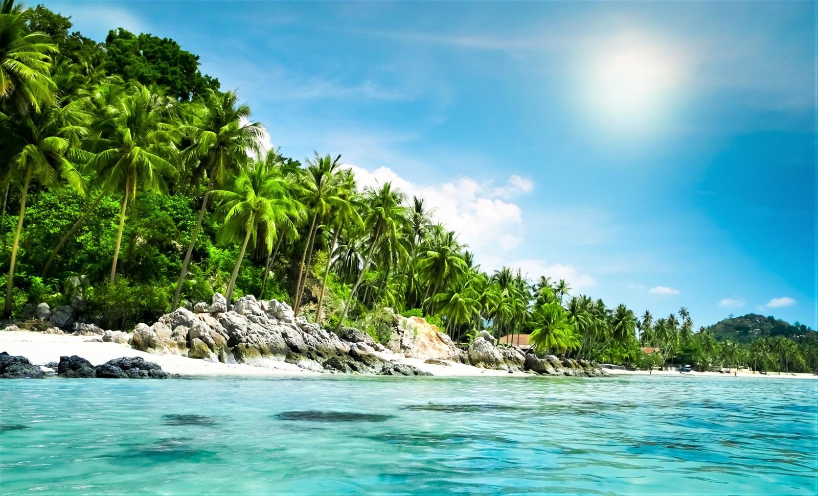 Billede af Stillehavet