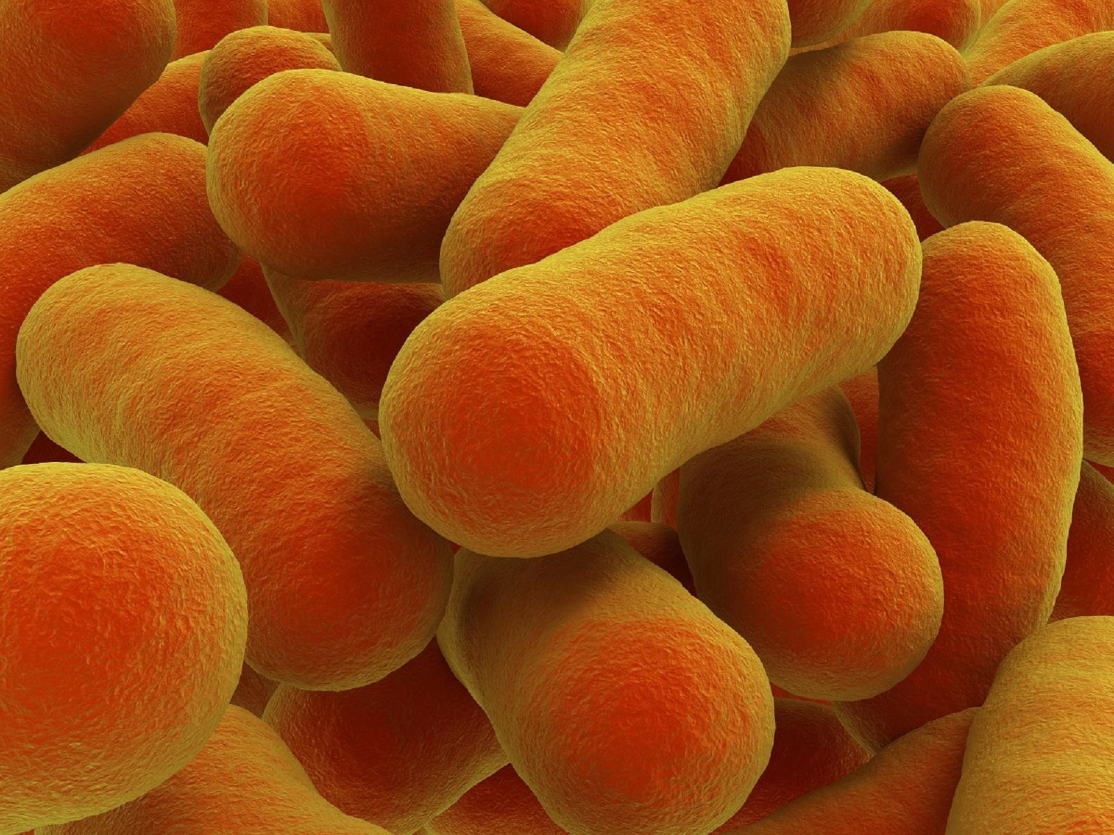 Billede af botulisme-bakterie