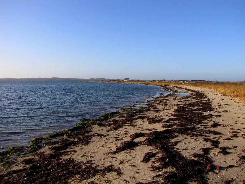 Strandkant