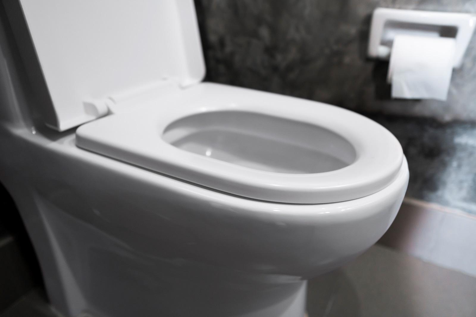 Billede af toilet 01