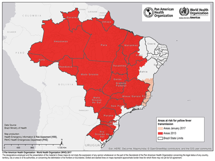 Gul feber Brasilien