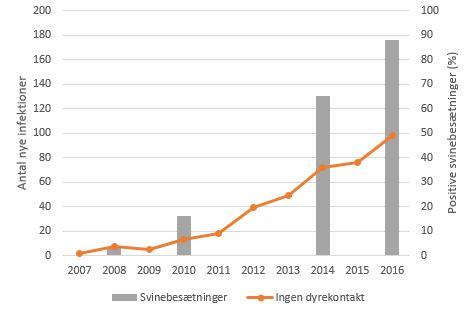 Graf der viser antallet af infektioner med husdyr-MRSA hos personer uden svinekontakt og andelen af positive svinebesætninger